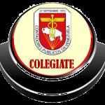 COLEGIATE
