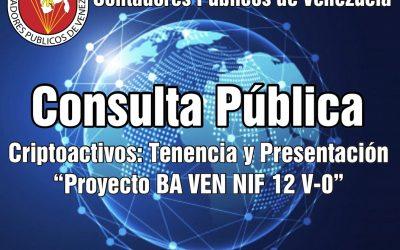 Abierto el Proceso de Consulta Pública BA Ven-NIF N° 12 V-0 Criptoactivos